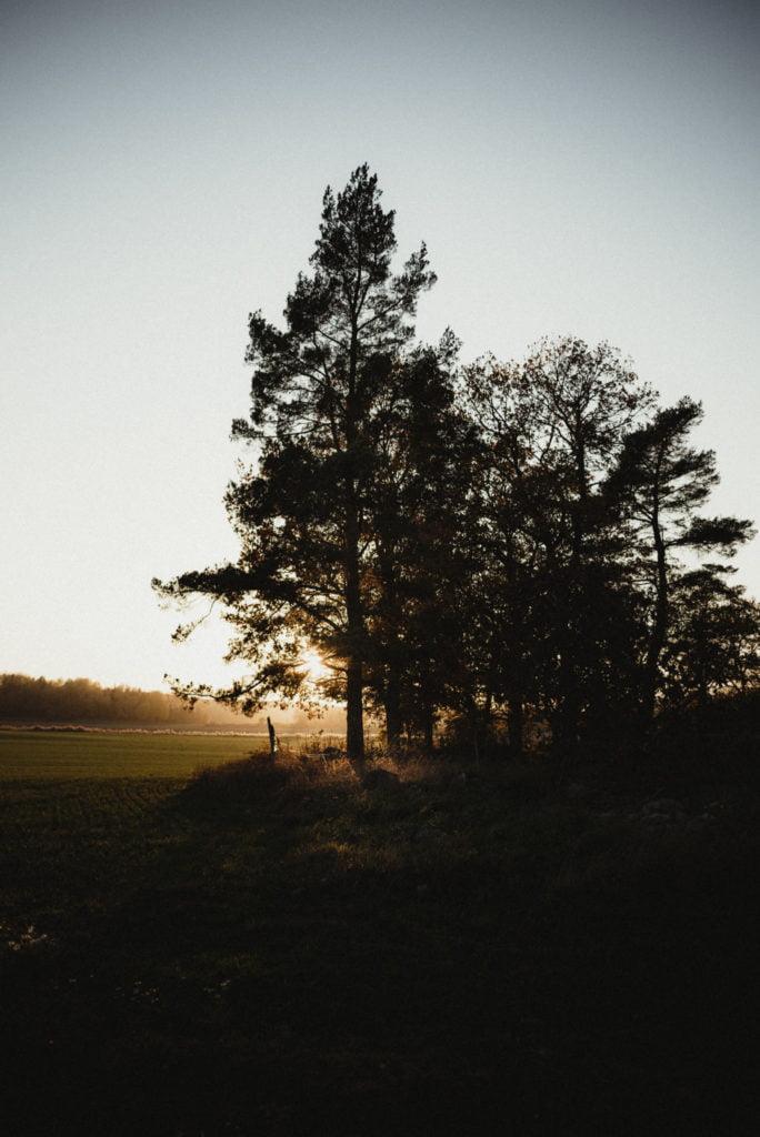 Stockholm - Torsdag och en tjuvkik 8