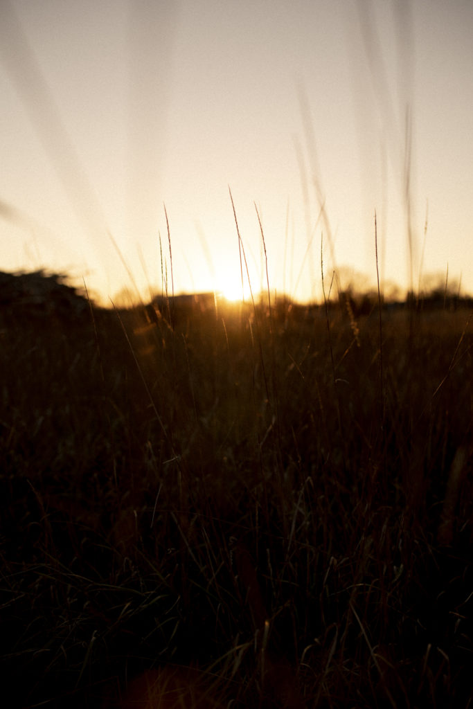 En oktober dag i solnedgången 2